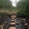 Wissahickon, Green Mile Trail, May 1, 2017